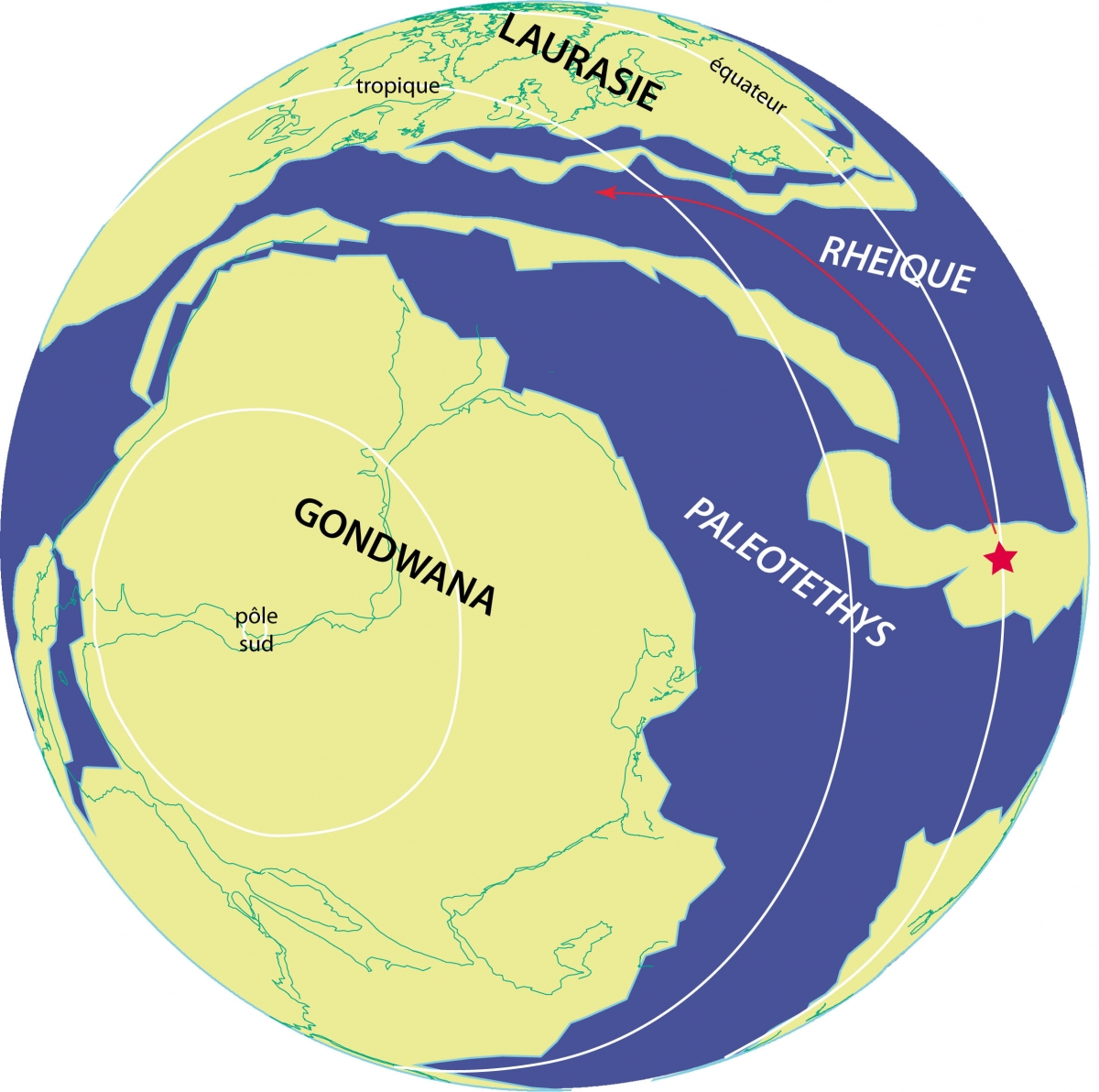 le gondwana